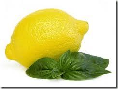 lemon basil