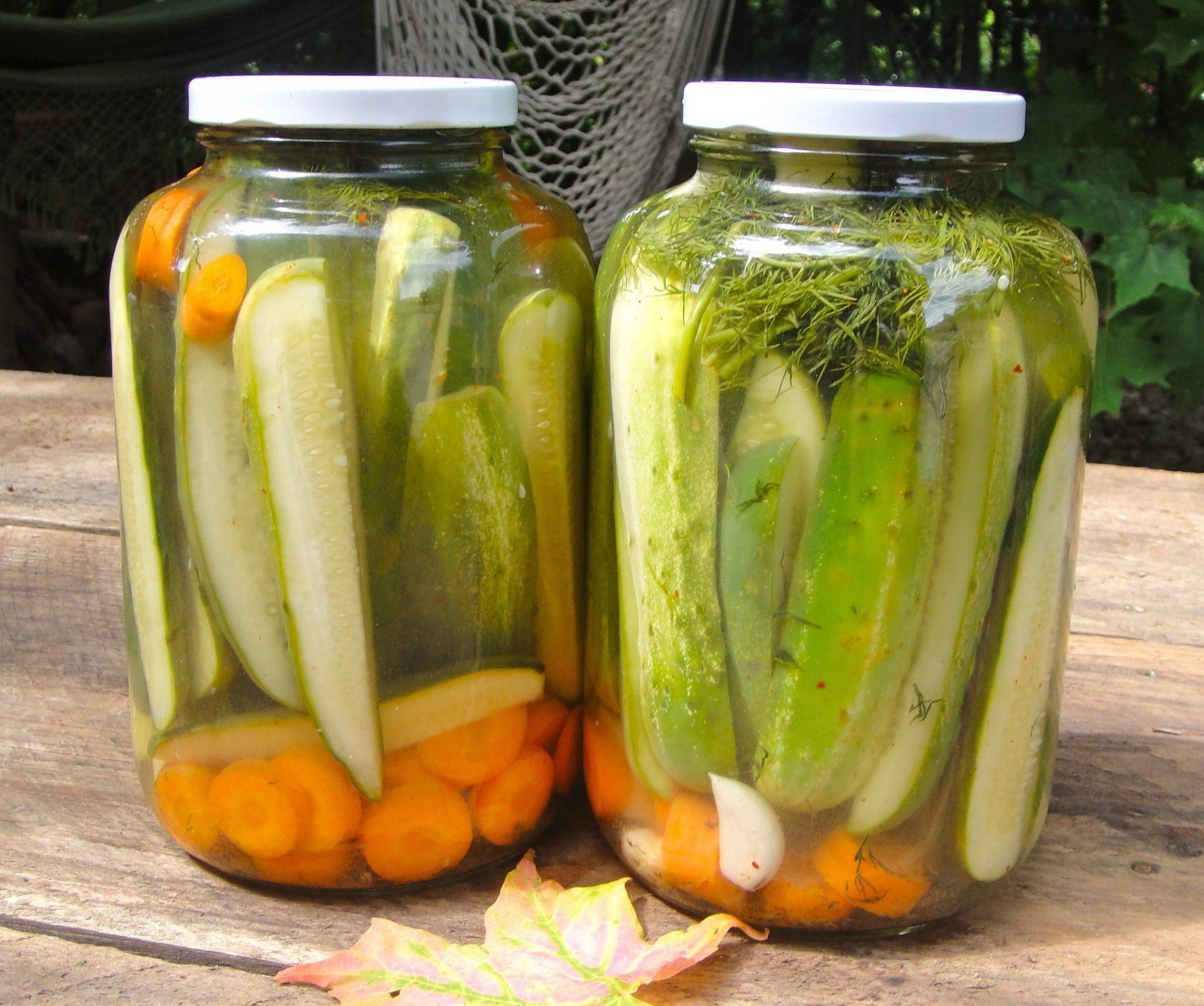 fermented foods Dr Hagmeyer