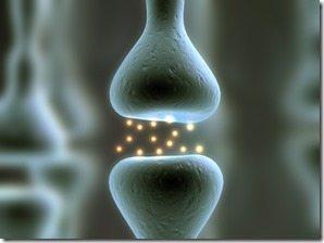 Neurotransmitters dopamine prolactin thumb