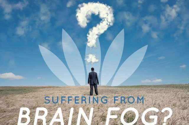 Put an End To Brain Fog, Memory Problems and Fatigue By Following These 10 Steps