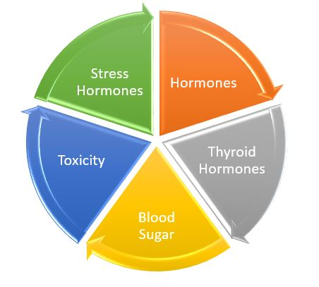 Dr Hagmeyer Hormone and Weight loss program