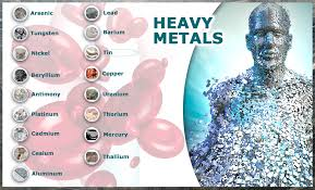 Heavy Metals and Autoimmune Disease