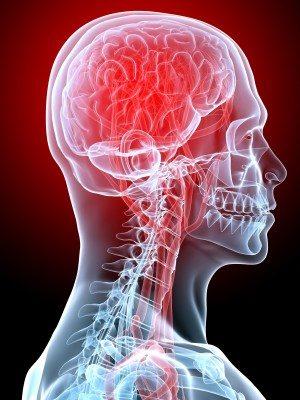 Trigger V: Balance and Optimize Hormones 3