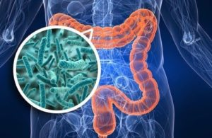 Microbiota-intestinal Image - identifying autoimmune disease