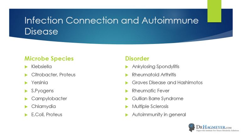 autoimmunity and Bacterial Infections- Connection Dr Hagmeyer