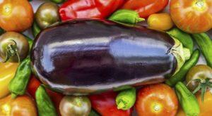 Nightshade Vegetables and Auto-Immune Disease