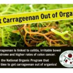 Carrageenan and 5 Other Gum Additives You Should Avoid If You Have IBS/SIBO