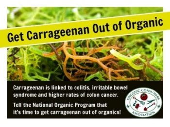 Carrageenan and 5 Other Gum Additives You Should Avoid If You Have IBS/SIBO 6