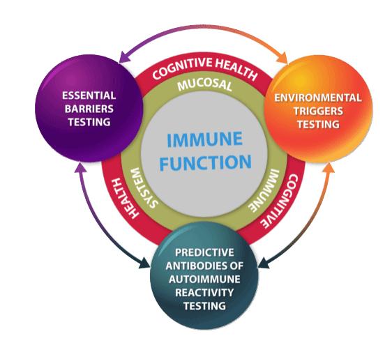 Autoimmune disease testing and Triggers 3