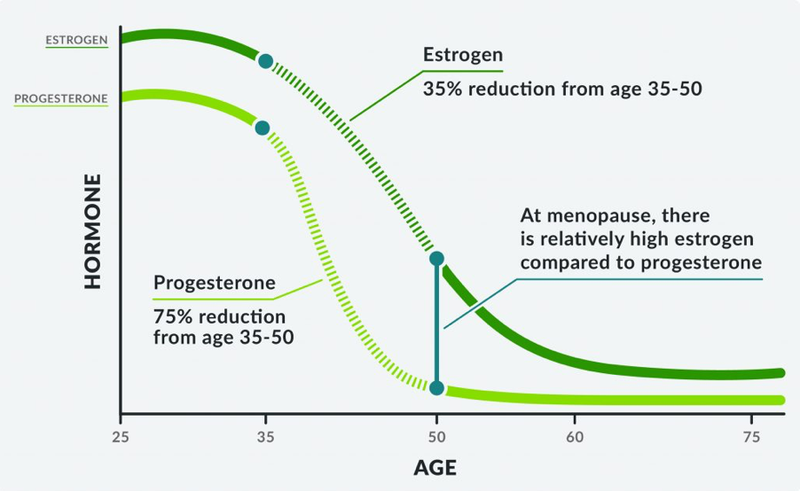 5 Ways To Reduce Estrogen Dominance When You Have Thyroid Disease 7